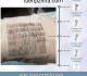 什么是毛囊单位?